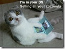 lolcat_ds