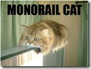 lolcat_monorail